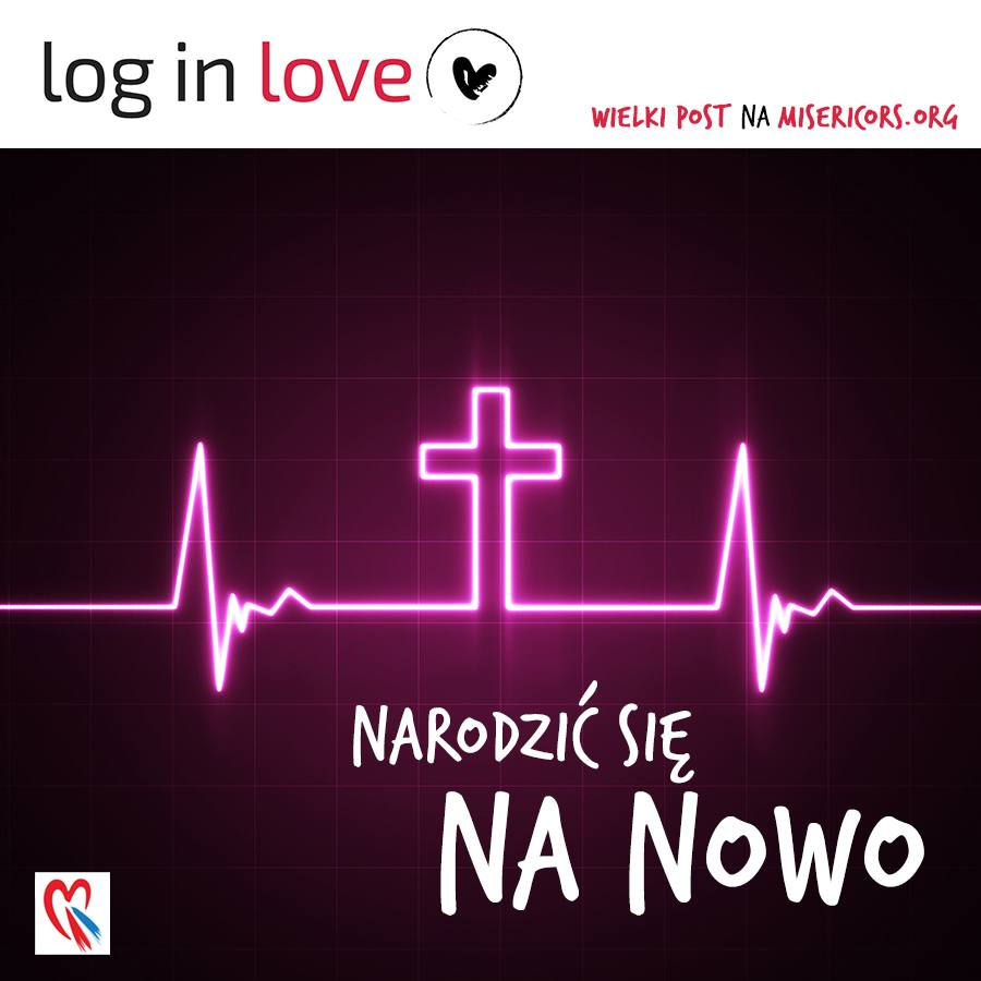 Log in Love dzień 19.