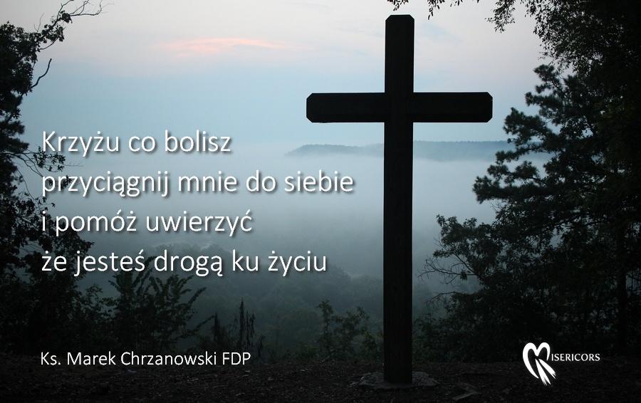 Krzyżu co bolisz
