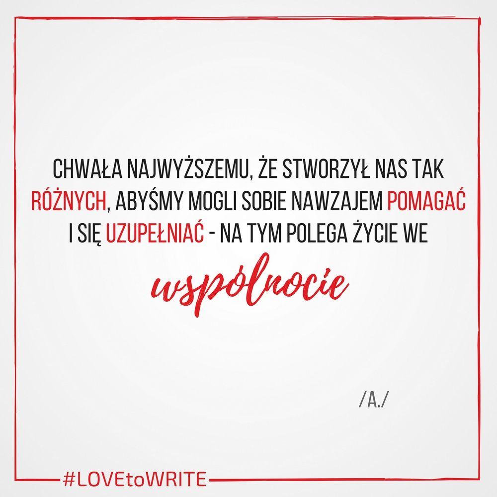 Log in Love dzień 9. Podsumowanie