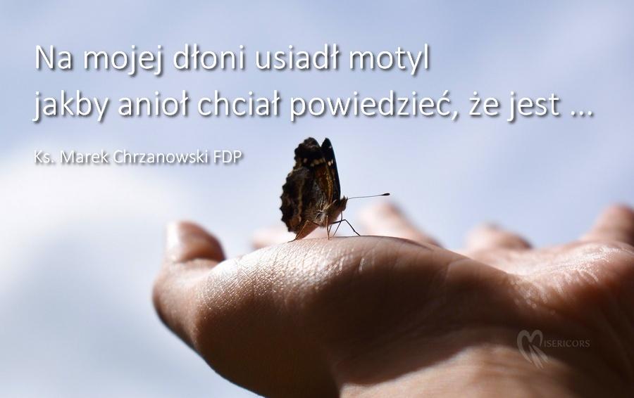Wiersza o aniołach